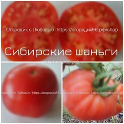 Сибирские шаньги.jpg