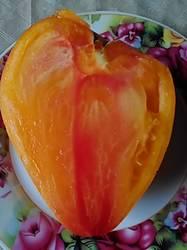 Оранжевый русский