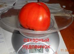 IMG_20190811_113025__compress90.jpg