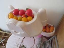tomaty_na_kuhne_u_uyli.JPG