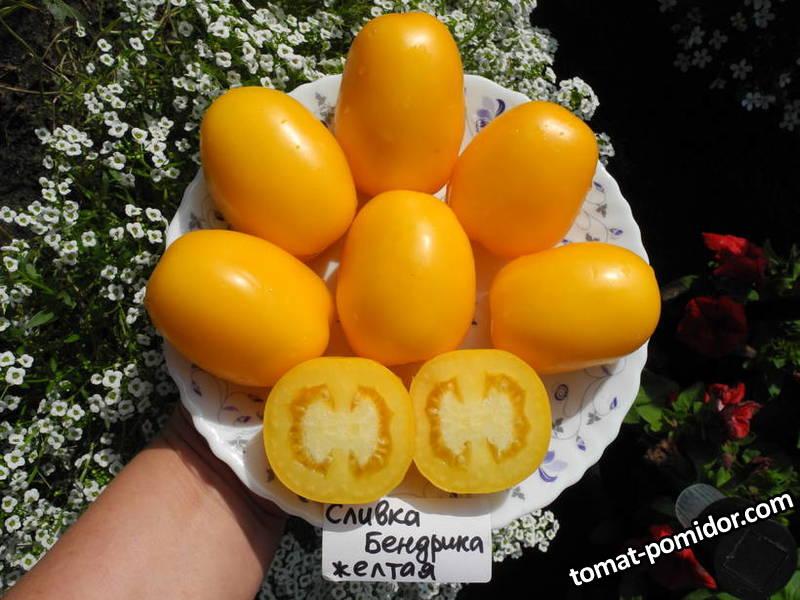 Сливка Бендрика желтая..JPG