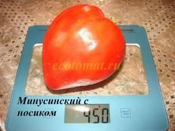 Минусинский с носиком (3).JPG
