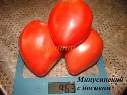 Минусинский с носиком (6).JPG