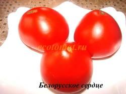 Белорусское сердце (4).JPG
