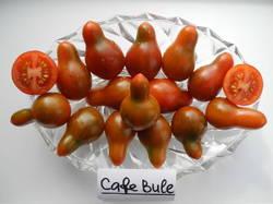 Кафе Буле (Cafe Bule).JPG