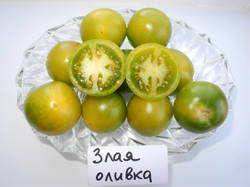 Злая маслина (EvilOlive).JPG