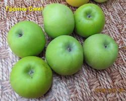 Яблоки Гренни Смит.jpg