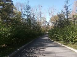 парк 2.jpeg