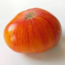 Большой полосатый оранжевый