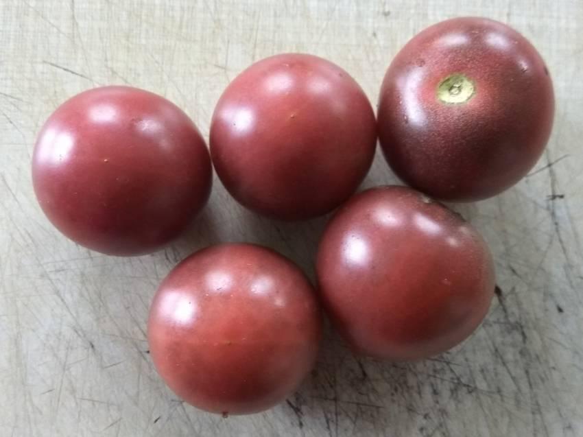 помидоры Шоколадный черри.jpg