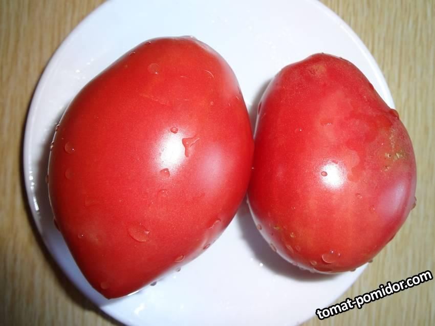 томаты 2019 г. часть 2