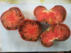 помидоры Лавандовое озеро1.jpg