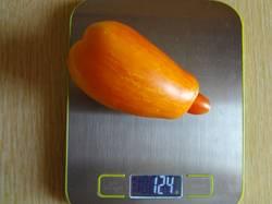Желтый огонь (Д) вес 07.09.19.jpgу.jpg