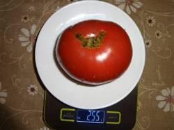 Дора вес 01.08.19у.jpg
