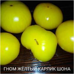 1570357713161.jpg