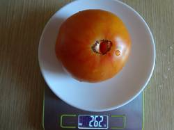 Казахский Шелавье вес 24.08.19у.jpg
