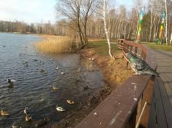 Светлоярское озеро.jpg