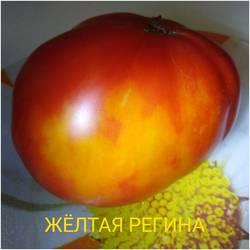 бп.jpg