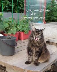 Федя .jpg