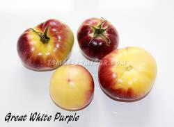 Большой белый фиолетовый