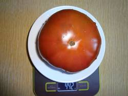 Моруно вес 24.08.19у.jpg