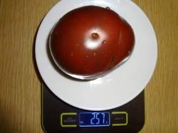 Моруно (КЛ) вес 20.08.19у.jpg