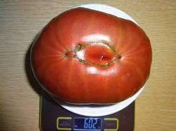 Моруно вес 25.08.19у.jpg