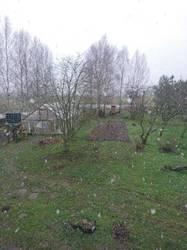Первый снег.JPG