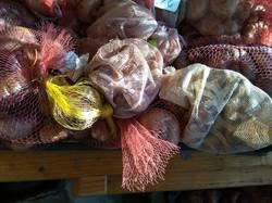 гладиолусы луковицы на хранении.jpg
