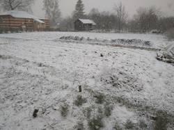 ливневый снег1.jpg