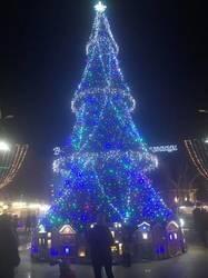 Бургас новогодний