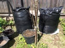 Мешки с будущим компостом