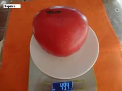 Лариса 23.08 вес.jpg