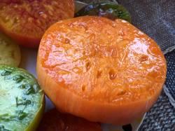 Оранж Джаз срез2.jpg