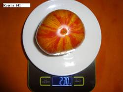 Козуля 141 21.08 вес_.jpg