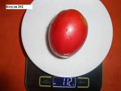 Козуля 202_20.08 вес_.jpg
