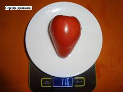 Сердце дракона 25.08 вес_.jpg