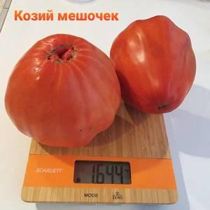20200917_190248.thumb.jpg.14405d212a462373d9ff4c60fee3318a.jpg