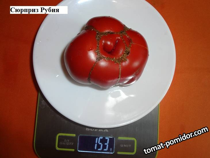 Сюрприз Рубия 19.09 вес.jpg_.jpg