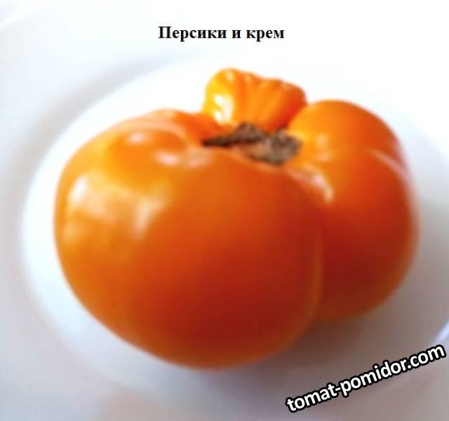 Персики и крем 1.jpg