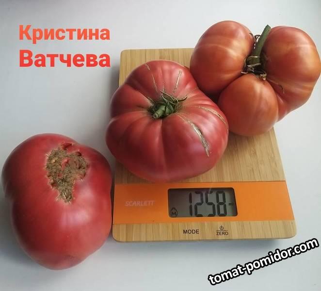 Кристина Ватчева