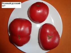 Розовый русский 117 (Д).jpg_.jpg