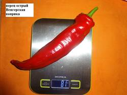 Венгерская паприка 07.09 вес_.jpg