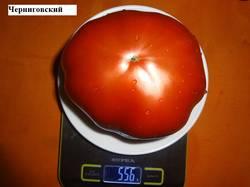 Черниговский 17.09 вес.jpg_.jpg