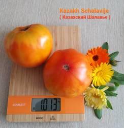 Казахский шалавье