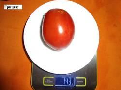 Грицик (С) 17.09 вес.jpg_.jpg_.jpg