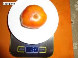 Серафима (Т) 17.09 вес.jpg_.jpg