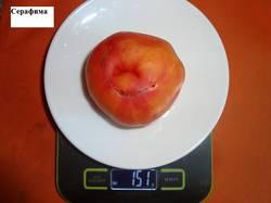 Серафима 23.09 вес_.jpg