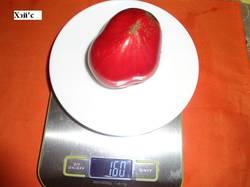 Хэй'с  (С) 16.09 вес.jpg_.jpg