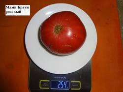 Мами Браун розовый 17.09 вес.jpg_.jpg